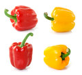 Pepper isolated on white background fresh Stock Photo