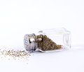 Pepper Shaker Royalty Free Stock Photo