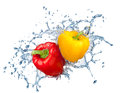 Pepper in spray of water juicy with splash on white background Stock Photos