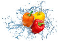 Pepper in spray of water juicy with splash on white background Stock Images
