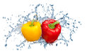 Pepper in spray of water juicy with splash on white background Royalty Free Stock Photos