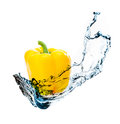 Pepper with water splash Royalty Free Stock Image