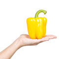 Pepper in a woman s hand isolated on white Royalty Free Stock Photography