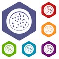 Peppercorns on a plate icons set hexagon