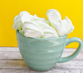 Peppermint large marshmallows in a big green cup Royalty Free Stock Photo