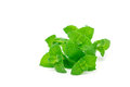 Peppermint leaves isolated on white, horizontal Royalty Free Stock Photo