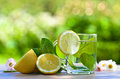 Peppermint tea with lemon Royalty Free Stock Photo