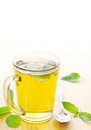 Peppermint tea mug of with fresh mint leaves Stock Photo