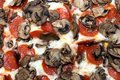 Pepperoni and Mushroom Pizza Royalty Free Stock Photography