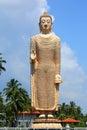 Peraliya Buddha Statue in Hikkaduwa