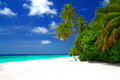 Perfect beach beautiful on maldives with white sand turquoise water green coconut palms and blue sky with white clouds Stock Photography