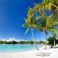 Perfect beach on Bora Bora Royalty Free Stock Photography