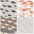 Perfect collection of seamless patterns with flamingo made in vector vector file organized in layers for easy editing Royalty Free Stock Photography
