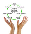 Perfect Customer Lifecycle Royalty Free Stock Photo