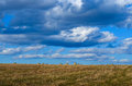 Perfect Harvest Landscape Royalty Free Stock Photo