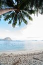 Perfect palm beach in philippines Royalty Free Stock Photo