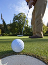 Perfect putt!  Right in the cup Stock Images