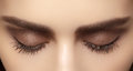 Perfect shape of eyebrows, brown eyeshadows and long eyelashes. Closeup macro shot of fashion smoky eyes visage Royalty Free Stock Photo