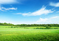 Perfect sky field of grass and Stock Photography