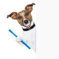 Perfect smile dog with big white teeth with a toothbrush behind banner placard Stock Images