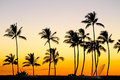 Perfect sunset a in hawaii Royalty Free Stock Images