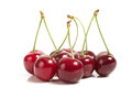 Perfect sweet cherries on a white background Royalty Free Stock Images