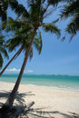 Perfect tropical white sand beach Stock Photos