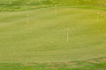Perfect wavy grass on a golf field ground with nice green Stock Photos