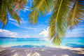 Perfect white beach with green palms and turquoise Royalty Free Stock Images