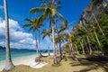 Perfekta palm beach Arkivbilder
