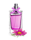 Perfume in beautiful bottle with pink flower isolated on white Royalty Free Stock Photo