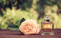 A perfume bottle and a fragrant yellow rose. Natural perfume in a square bottle on a green blurred background. Royalty Free Stock Photo
