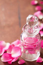 Perfume bottle and pink rose flowers spa aromatherapy Stock Images