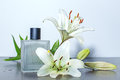 Perfume and flowers wet of orchids Stock Photo