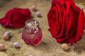 Perfume in a glass bottle, red rose flower Royalty Free Stock Photo