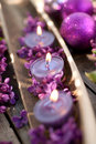 Perfumed candles and common lilac Stock Images