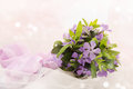 Periwinkle spring bouquet of lilac tinted Stock Images
