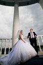 Perky bride and groom in love the happiest day of your Stock Image
