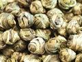Perle di tè verde cinese Immagini Stock Libere da Diritti