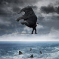 Person with an elephant above sea Royalty Free Stock Photo