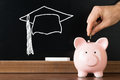 Person Inserting Coin In Piggybank For Completing Education Royalty Free Stock Photo