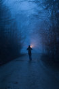 A person with light in forest in night Stock Image