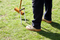 Person playing croquet Stock Images
