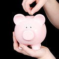 Person putting money in piggy bank Royalty Free Stock Image