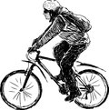 Person riding a bike vector drawing of man bicycle Stock Photos