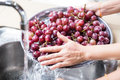 Person`s hand washing grapes with running water in household sin Royalty Free Stock Photo