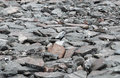Perspective view of Grunge Gray Natural Stone on The Ground for Street Road. Sidewalk, Driveway, Pavers Royalty Free Stock Photo
