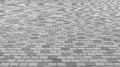 Perspective View of Monotone Gray Brick Stone Street Road. Sidewalk, Pavement Texture