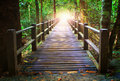 Perspective of wood bridge in deep forest crossing water stream Royalty Free Stock Photo