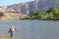 Pescador fly fishing no green river Fotografia de Stock Royalty Free